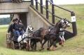 5.000 Euro Extra-Preisgeld für die Ponyfahrer